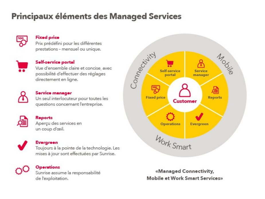 Grafik_Managed_Service_750x563px_FR